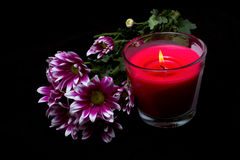 Spa candle and pink chrysanthemums Stock Photos