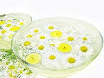 Spa candles daisy flowers Stock Photos