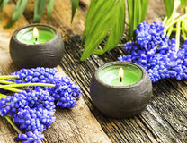 Spa candles still life setting with purple flowers on wooden bac Stock Images
