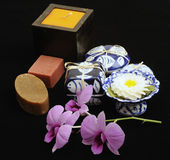 SPA and chinese porcelain Royalty Free Stock Photo