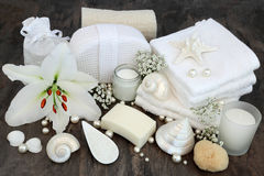 Spa Cleansing Treatment Stock Image