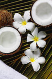 Spa coconut. Spa objects coconuts flowers towel on palm leaf Royalty Free Stock Image