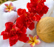 Spa coconut. Spa objects coconuts flowers with white  towel Royalty Free Stock Photography