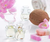 Spa coconut Stock Images