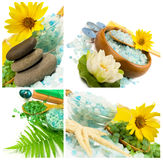 Spa collage. With sea salt, herbs and candles Royalty Free Stock Photo