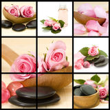 Spa collage. Roses and massage stones Stock Photography