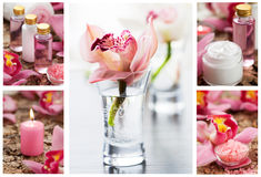 Spa collage. Spa and aromatherapy collage Royalty Free Stock Photography