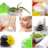 Spa-collage with beautiful woman. Spa-collage with  cosmetics product, aloe, flowers and face of a beautiful woman on white background Royalty Free Stock Images