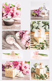 Spa collage with natural soaps pink flowers and olive branches Royalty Free Stock Photos