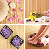 A spa collage of rose petals and healthy salt Stock Images