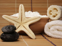 Spa collection. On natural background Royalty Free Stock Photos