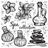 Spa Collection. Hand-drawn Beautiful Elements In Linear Style. Isolated Vector Illustration. Natural Cosmetics, Aroma, Oil. Stock Photos