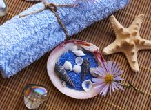 Spa composition. Spa items on bamboo mat Stock Images