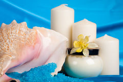 Spa composition. Royalty Free Stock Images