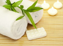 Spa composition with bamboo Stock Image