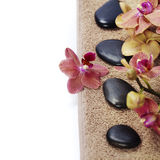 Spa composition with beautiful orchid Stock Photography