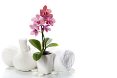 Spa composition with beautiful pink orchid Stock Images