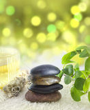 Spa composition with blur Stock Photography