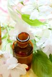 Spa composition of bottles and flowers Royalty Free Stock Image
