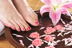 A spa composition of feet and petals in a bowl Royalty Free Stock Images