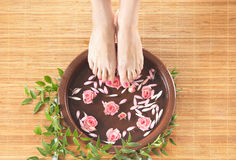 A spa composition of feet and petals in a bowl Stock Images