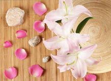 A spa composition of flowers, stones and a bowl Royalty Free Stock Photography