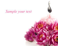 Spa composition with fragrance oil and water lily royalty free stock images