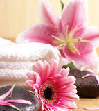 Spa composition made of natural objects Stock Photo