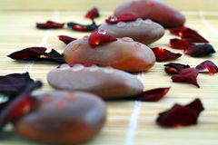 Free Spa Composition Of Stones And Red Petals Of Rose Stock Photography - 4111072