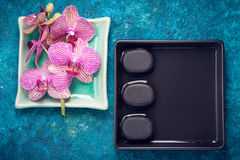 Spa composition with orchids and stones zen. top view Stock Images
