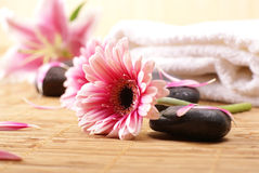 A spa composition with pink flowers Stock Photo