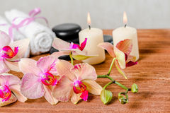 Spa composition of pink orchid flower, towels, zen stones and ca Stock Image