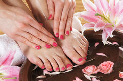 A spa composition of feet and petals in a bowl Royalty Free Stock Image