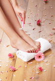 A spa composition of shaving feet and petals. A spa composition of sexy female feet and pink rose petals on a white towel. The girl is shaving her legs Stock Photos