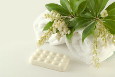 Spa composition with soap bar and towels Stock Image