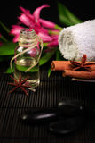 Spa composition. With spices and coconut oil Royalty Free Stock Photography