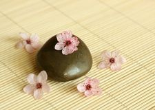 Spa composition of stones and  flowers Stock Image