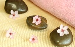 Spa composition of stones and pink flowers Royalty Free Stock Photography