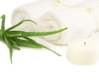 Spa composition with two towels and aloe plant Stock Photo