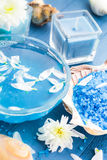 Spa composition water bath salt shells flowers Royalty Free Stock Image