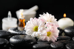 Spa composition of white daisy flowers, candle, fragrance oil, c Stock Images
