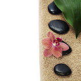 Spa Composition With Beautiful Orchid Stock Photos