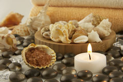 Free Spa Composition With Salt, Seashells And Candle Royalty Free Stock Photo - 29615955