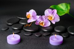 Spa composition of zen stones, lilac orchid Stock Photos
