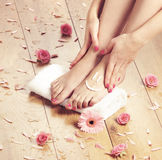 Spa compositions of sexy female feet and rose petals Royalty Free Stock Photo
