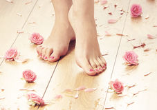Spa compositions of sexy female legs and plenty of petals Royalty Free Stock Photo