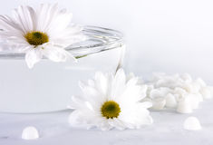 Spa concept. White flowers and a bowl with water Stock Images