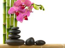 Spa concept. Zen stones and  orchid Stock Image