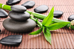 Free Spa Concept Stock Images - 19339364