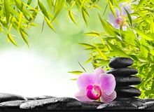 Spa concept. With zen stones and  orchid Royalty Free Stock Photo